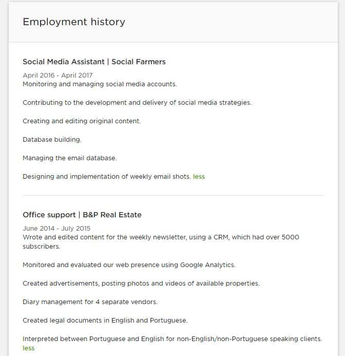 Upwork Profile Example Work History