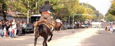 What To Do In Buenos Aires _ Go To The Feria De Matadores